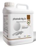 phostrade Mg-Zn