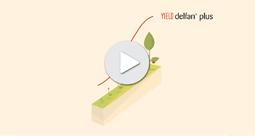 Delfan Plus parle le langage des plantes